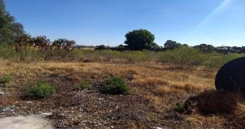 renta de terreno rancho colorado