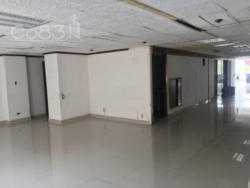 renta - oficina - torcuato tasso - 320 m - $125,000