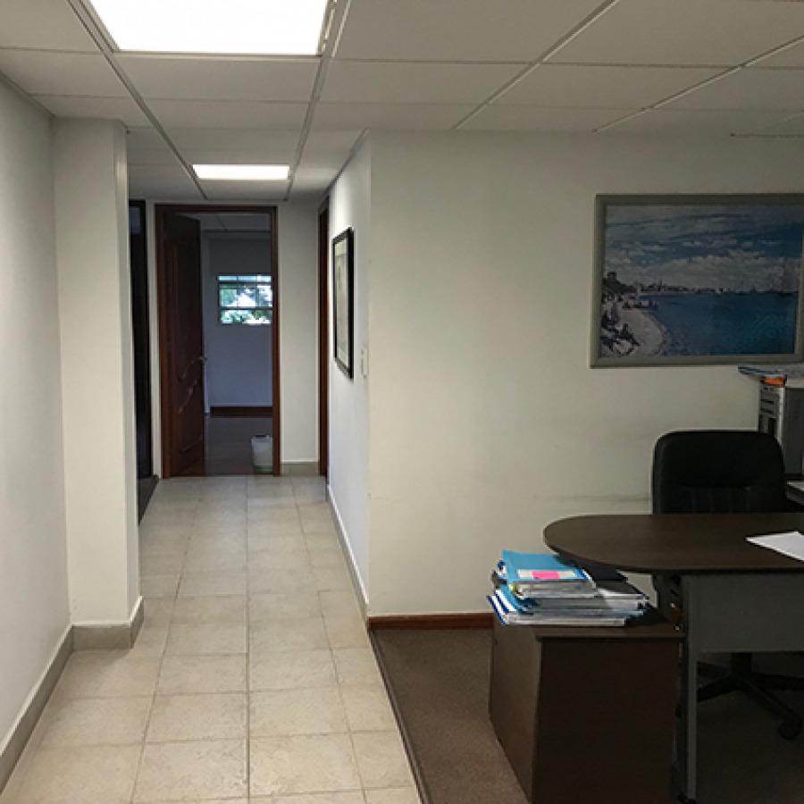 renta / oficinas viveros coyoacan