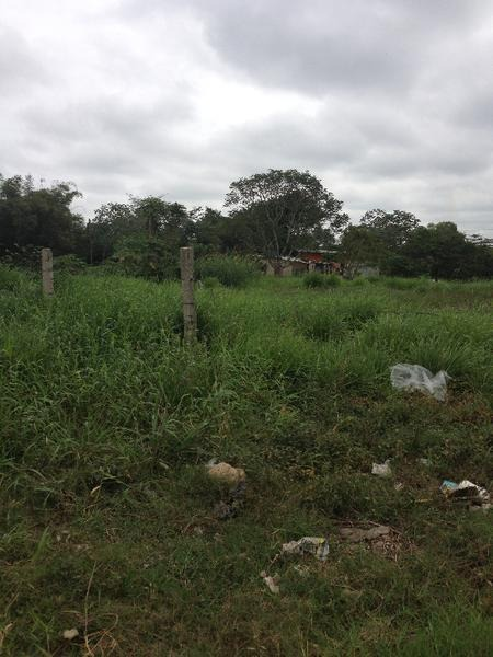 renta y venta de terreno sobre carretera coatza-mina