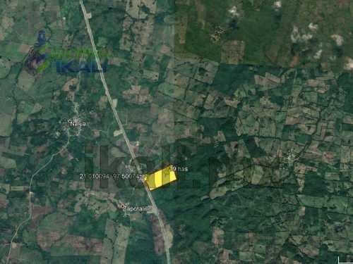 rento terreno 19 ha km 16.4 nueva autopista tuxpan - tampico veracruz, se renta $2.50 pesos el m² a partir de una hectárea, el terreno se ubica enfrente de la nueva autopista es un terreno grande y a
