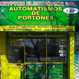 reparacion de automatismo de portones ppa seg rossi rcg roma