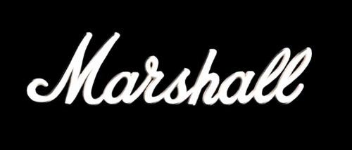 reparacion servicio tecnico marshall laney hartke fender