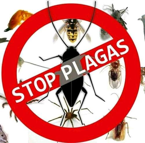 repelente de aves, murciélago. fumigacion y control de plaga