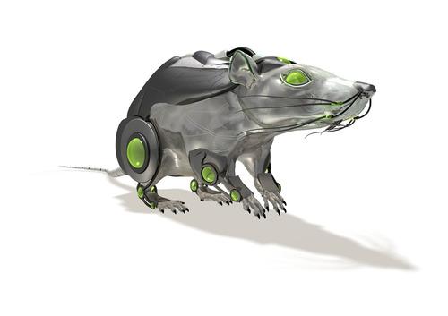 repelente electrónico ratas y murciélagos radarcan r-301