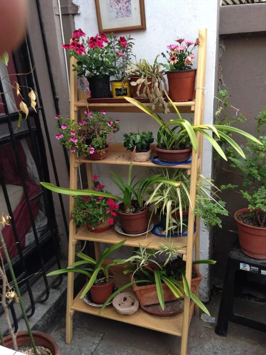 Repisa tipo escalera de madera para plantas for Repisas para escaleras