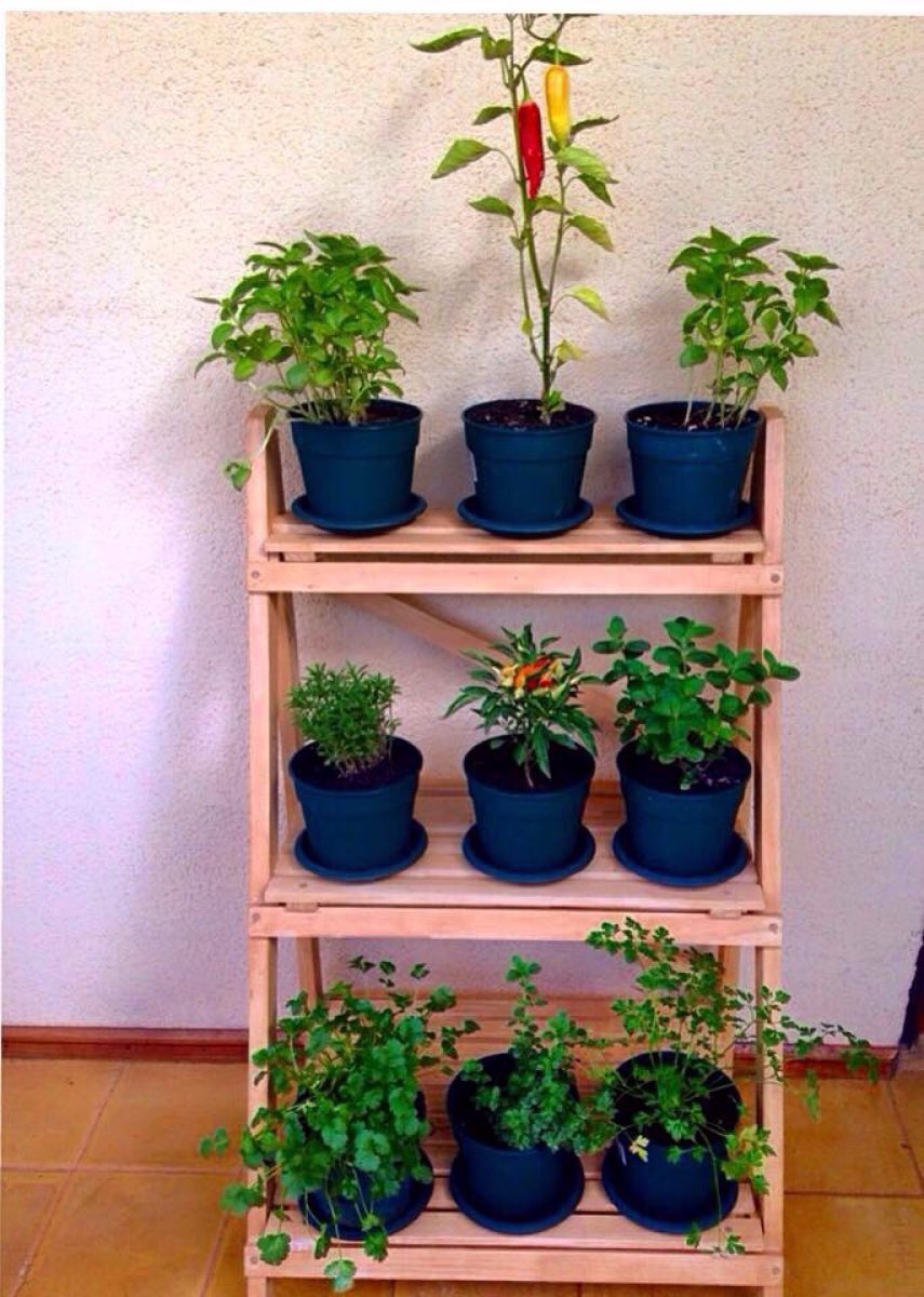 Repisas para plantas o decorativos en mercado libre - Estanteria para plantas de interior ...