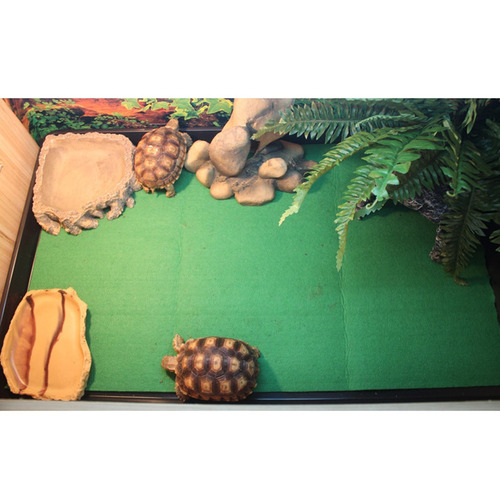 reptil alfombra habitat sustrato para tortuga , dragón , ge