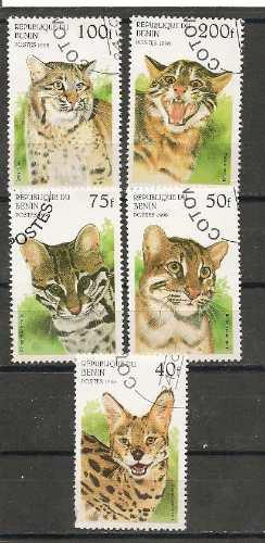 republica de benin felinos   5 diferentes