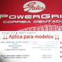 Correa Tiempo Fiat Palio Siena Idea Adventure 1.8 Original