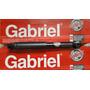 Amortiguador Trasero Terios 02-07 Gabriel