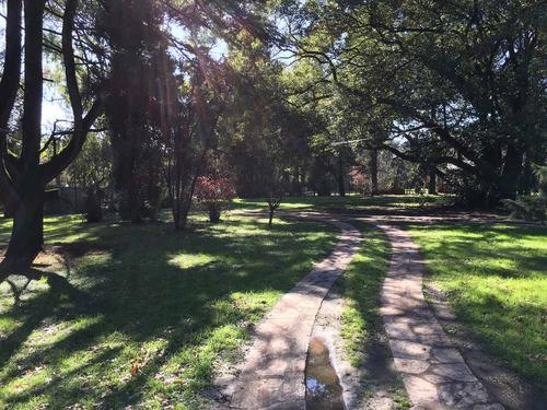 residencia geriátrica en parque leloir