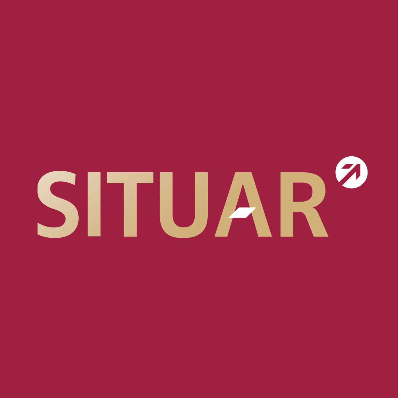 Logo de  Situar+propiedades