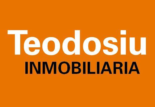 Logo de  Teodosiu Inmobiliaria