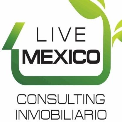 Logo de  Live Mexico Consulting
