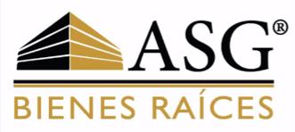 Logo de  Consultores Y Asesores