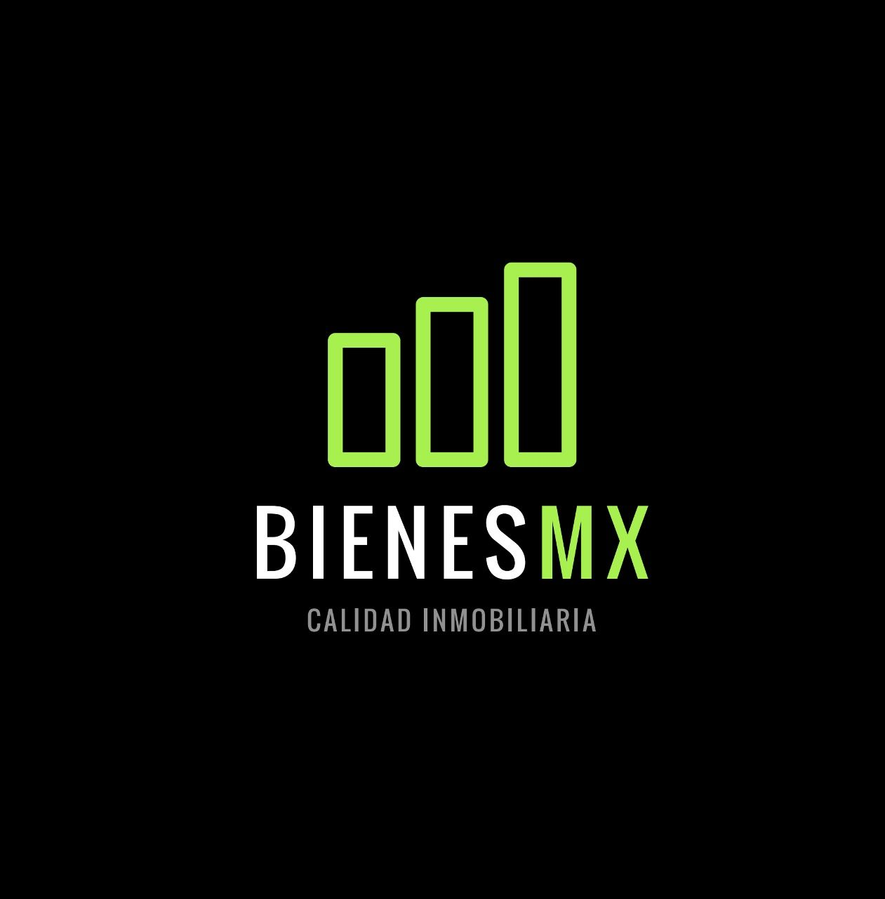 Logo de  Bienes Mx