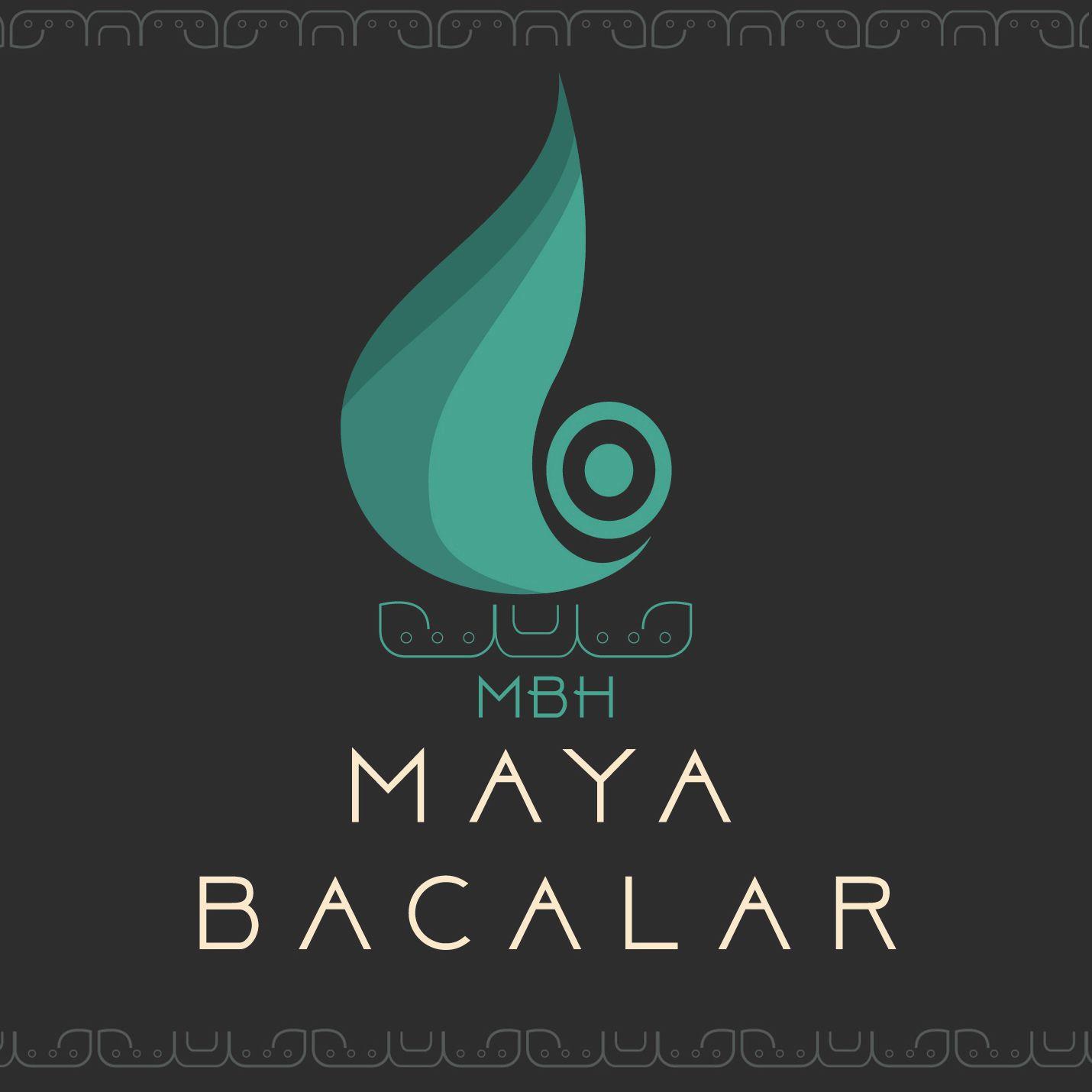 Logo de  Propiedades Sales Mb Raíces