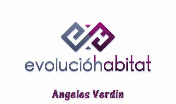 Logo de  Angie Verdin