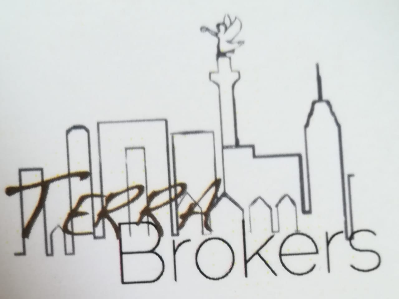Logo de  Terra Brokers