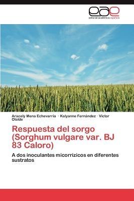 respuesta del sorgo (sorghum vulgare var. bj 83 envío gratis