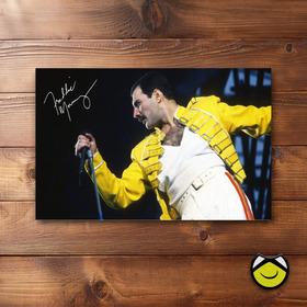 Retablo Vinilo (60x40) Freddie Mercury Envio Gratis
