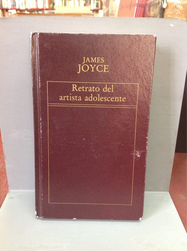 retrato del adolescente por james joyce