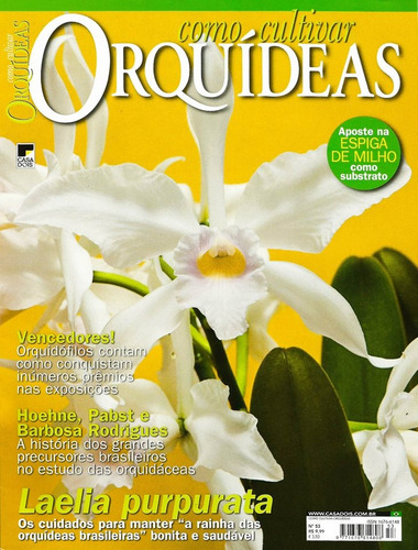 revista como cultivar orquídeas 53