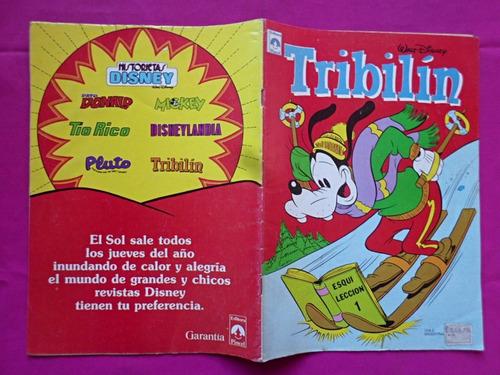 revista tribilin n° 40 editorial tucuman y pincel