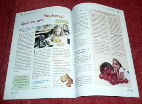 revista vida 2008 psicología salud astrid friedler lonchera