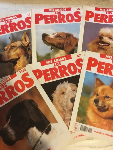 revistas mis amigos los perros.