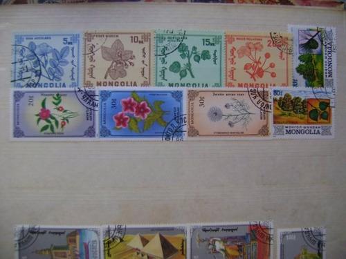 rf54 - selos flora arquitetura mongólia lote