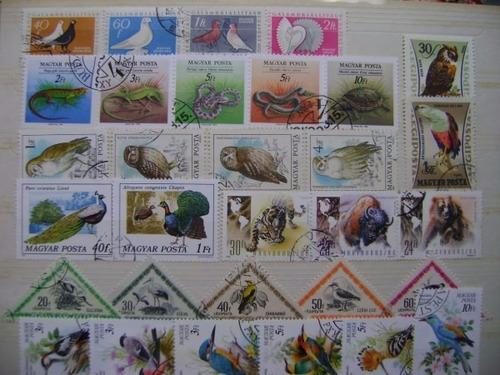 rf89 selos fauna aves peixes borboleta mamífero hungria lote