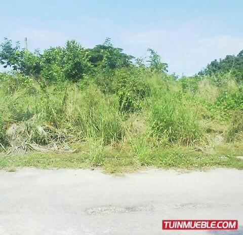 rgasesorinmobiliario vende terreno en asocata