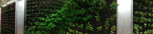 riego automático balcón-terraza-jardín