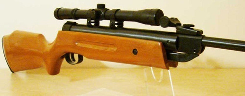 rifle poston 5,5 (b1-4)  + mira telescopica 4x20 + postones