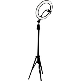 Ring Light Tripé Iluminador Led Portátil 26cm + Tripé 210cm