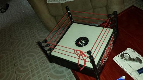 ring raw buenas condiciones