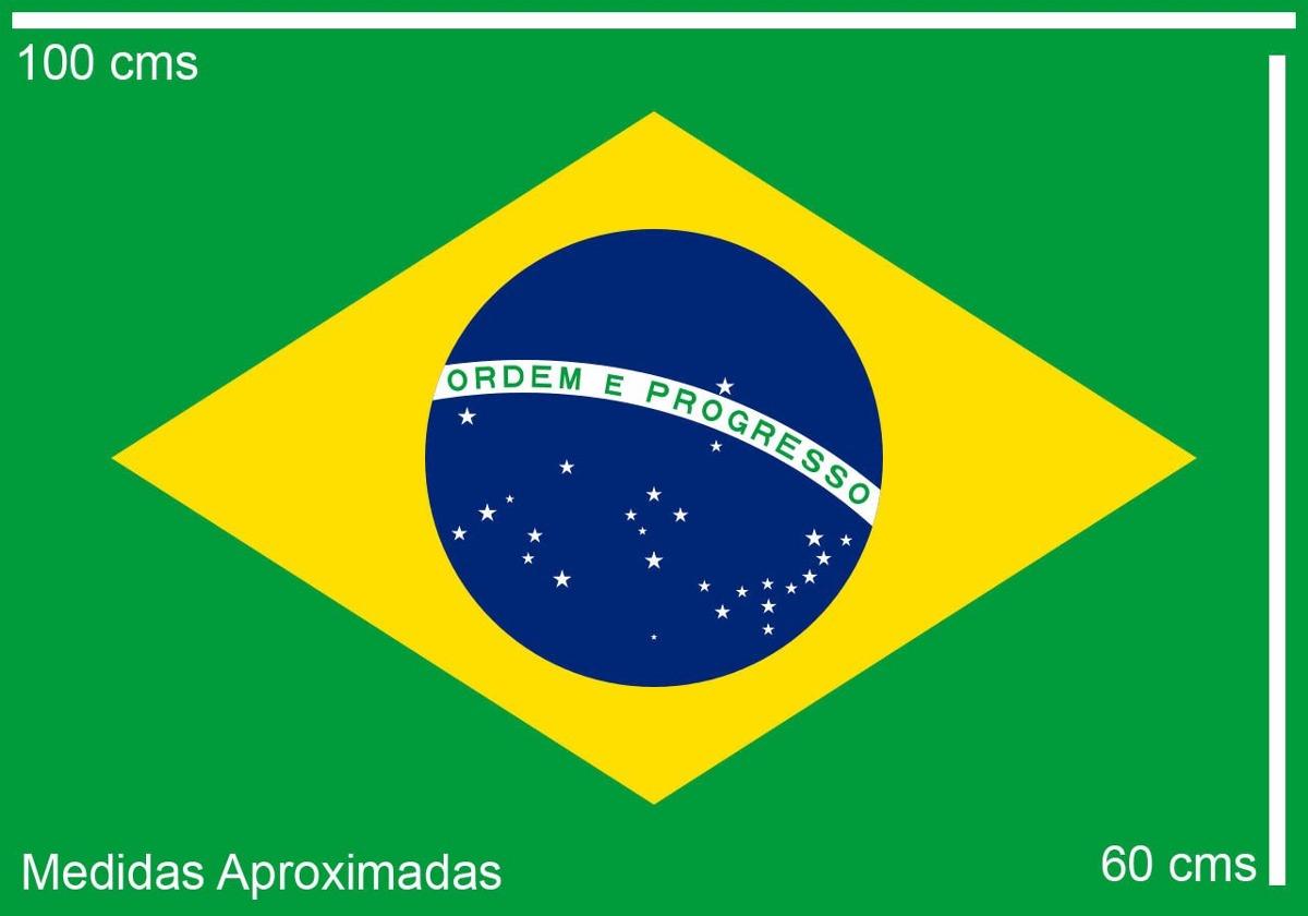d2bcf4cb49048 Bandeira Vasco Da Gama - Rio De Janeiro + Bandeira Do Brasil - R ...