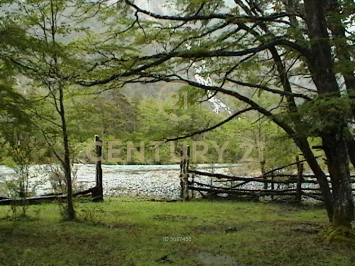 rio tranquilo