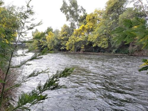 rio viejo - rio chillán remodelada