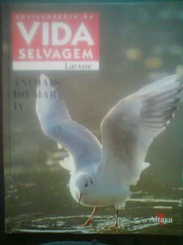 r/m - livro - animais do mar 4 - vida selvavem