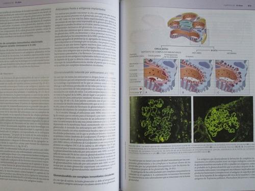 robbins patología estructural y funcional 9 edición elsevier
