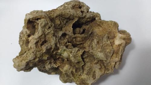 rocha aquário marinho ciclídeo africano in natura 1kg