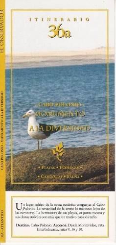 rocha cabo polonio itinerario diario el observador fotos