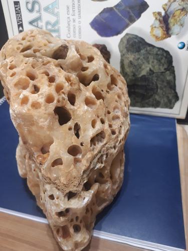 rocha estilo dragon nacional  para aquários e fontes 3.5kg