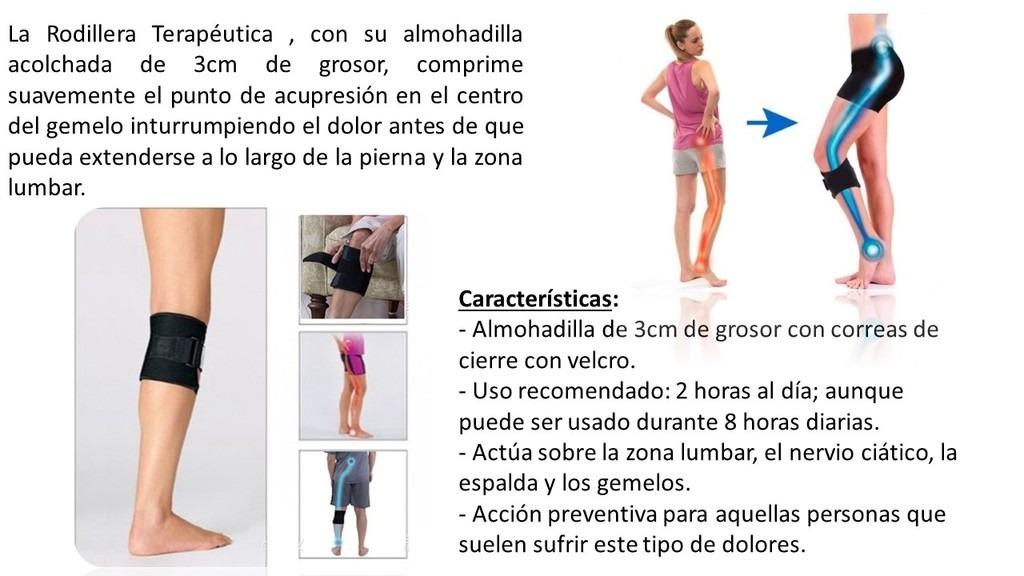 Atractivo Nervio Ciático Vía Anatomía Embellecimiento - Imágenes de ...