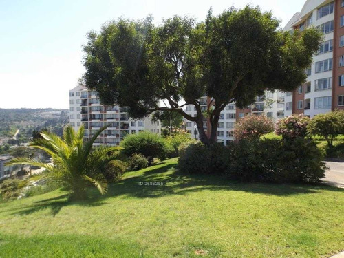 rodimenia / jardín del mar