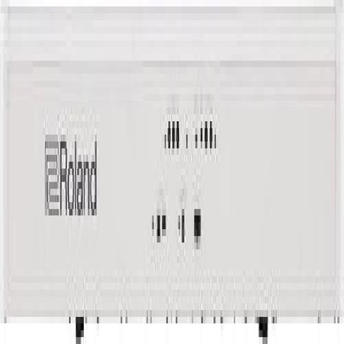 roland fp-60piano digital (blanco)