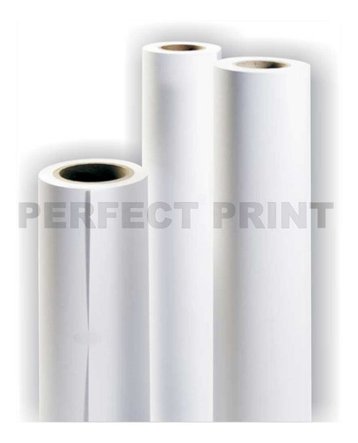 rollo film transparente a3 30 cm x 10 mts tinta full color